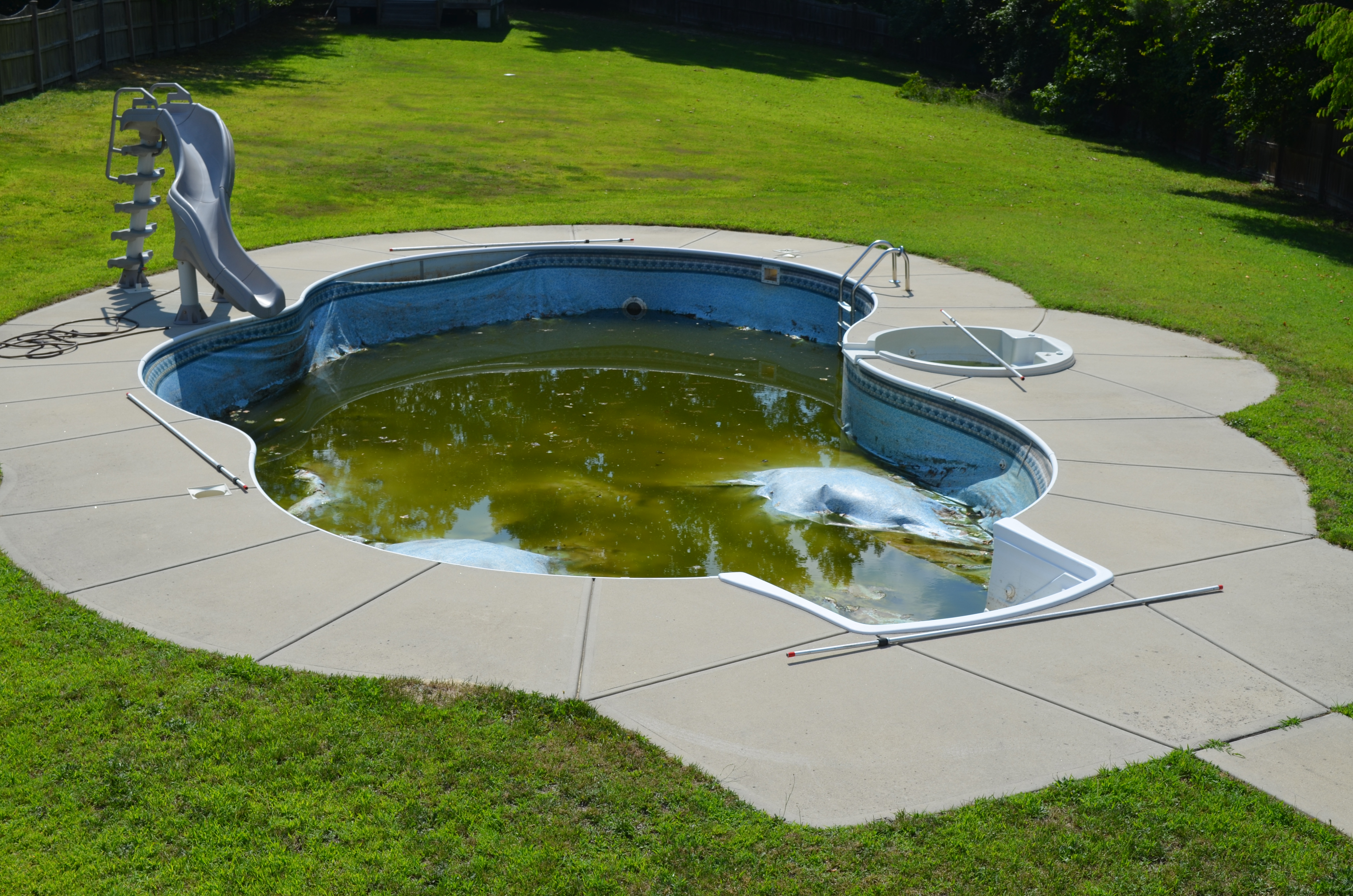 backyard pool inspection raleigh